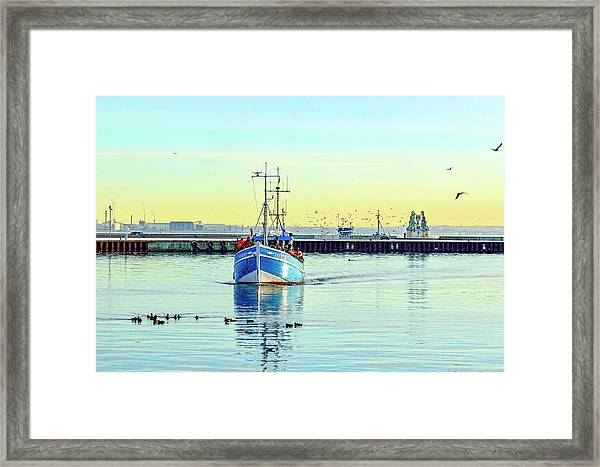 Yield For Ducks Framed Print