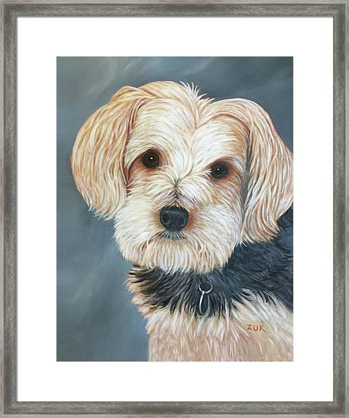 Yorkie Portrait Framed Print