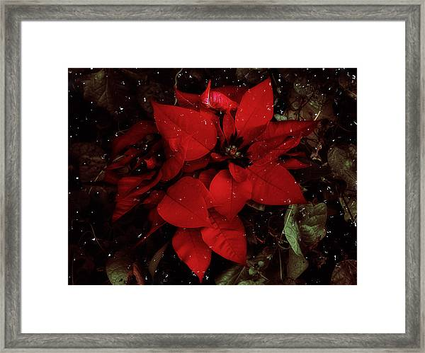 You Know It's Christmas Time When... Framed Print
