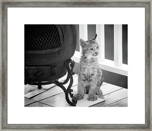 You Say Somethin Framed Print