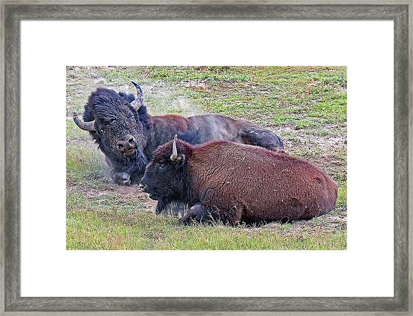 You're What? Framed Print