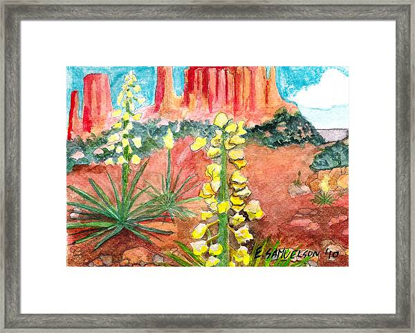 Yucca In Monument Valley Framed Print