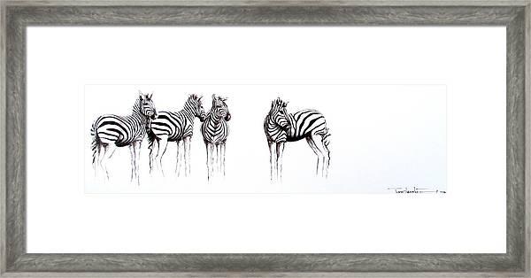 Zebbies Framed Print