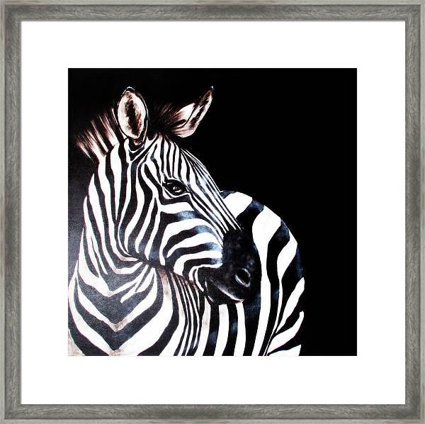 Zebra 2 Framed Print