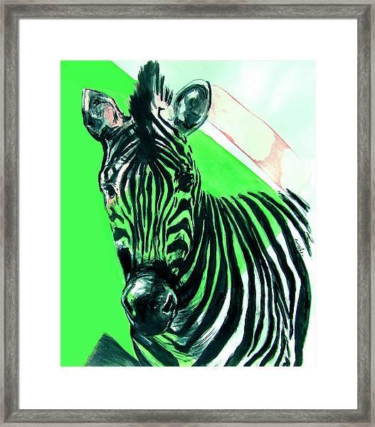 Zebra In Green Framed Print