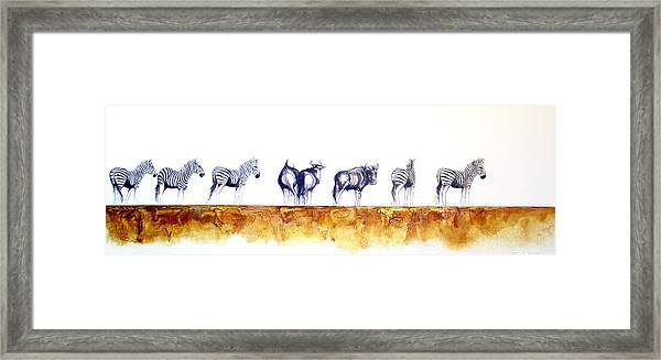 Zebras And Wildebeest 2 Framed Print