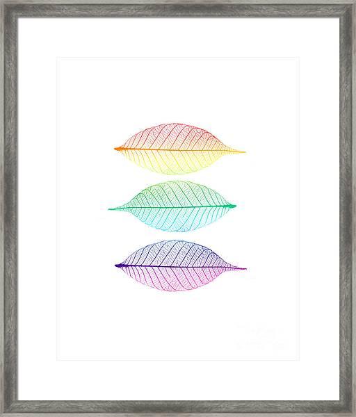 Zen Leaves Framed Print