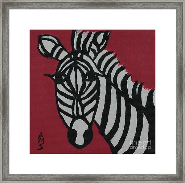 Zena Zebra Framed Print