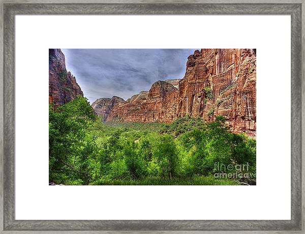 Zion View Of Valley With Trees Framed Print