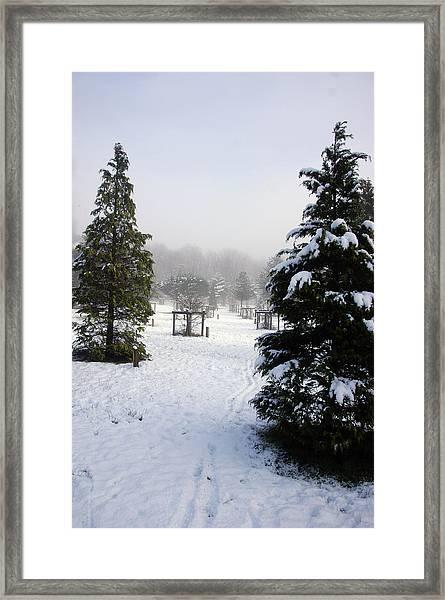 30/01/19  Rivington. Memorial Arboretum. Framed Print