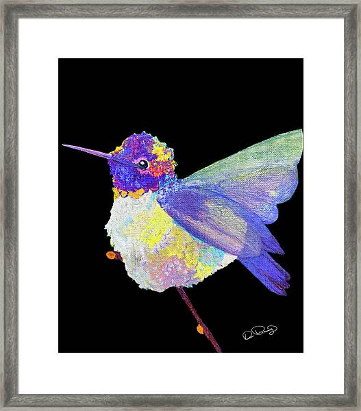Framed Print featuring the photograph Anna's Hummingbird IIi by Dee Browning