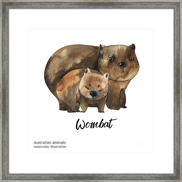 Australian Animals Watercolor Framed Print