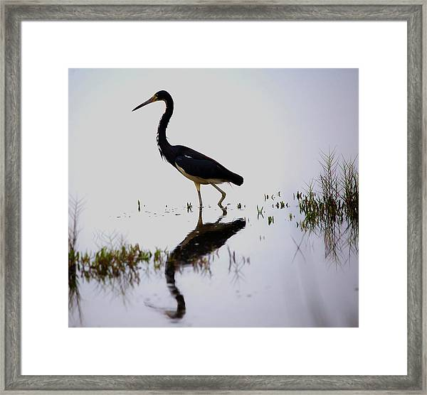 Blue Reflection Framed Print