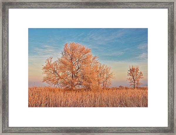 Canada, Manitoba, Lorette Framed Print by Jaynes Gallery