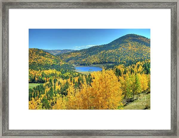 Colorado Gold Framed Print