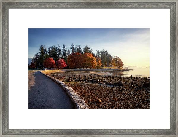 Colorful Autumn Foliage At Stanley Park Framed Print