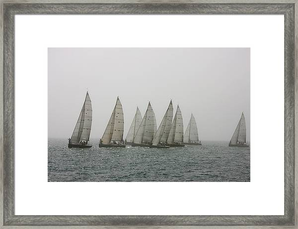 Competitive Sailing In Key West Framed Print