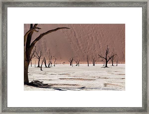 Deadvlei Desert Framed Print