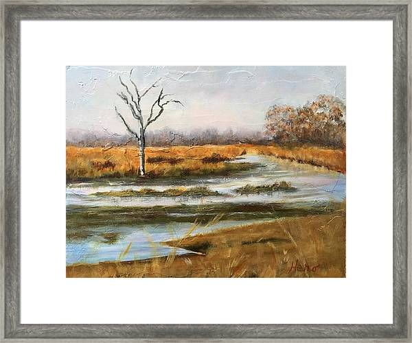Early Spring On The Marsh Framed Print