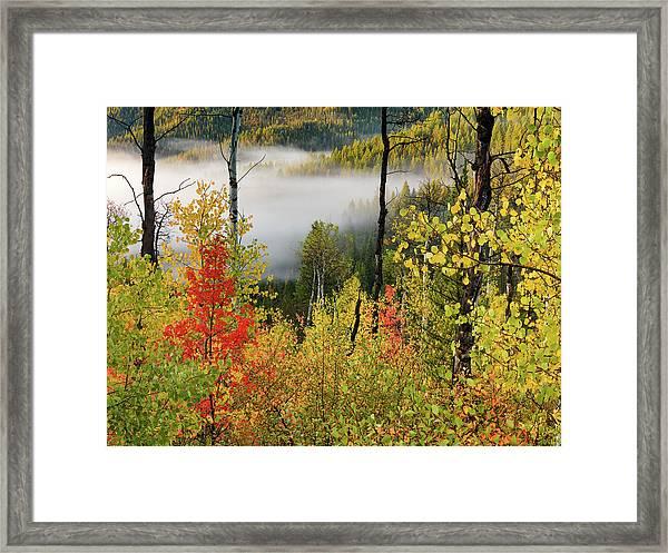 Fall Morning 2 Framed Print by Leland D Howard