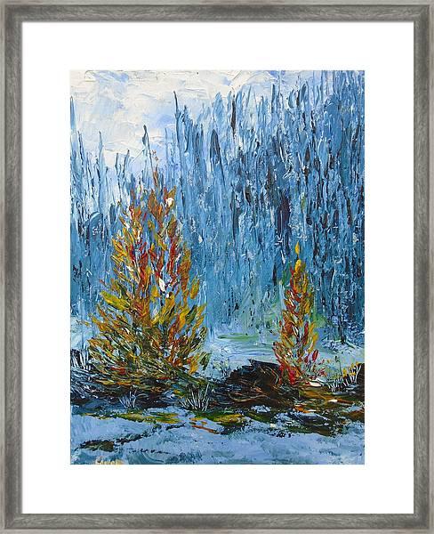 Far Off Woodland Lough Hyne. Framed Print