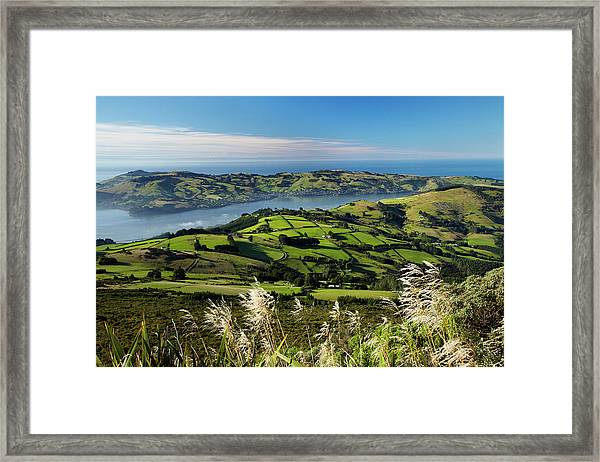 Farmland At Upper Junction, And Otago Framed Print by David Wall