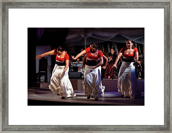 Framed Print featuring the photograph Flamenco 39 by Catherine Sobredo