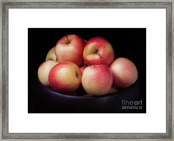 Gala Apples Framed Print