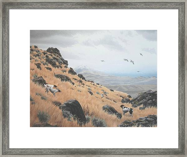 High Desert Dreams Framed Print