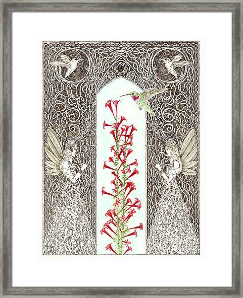 Hummingbird Sanctuary Framed Print