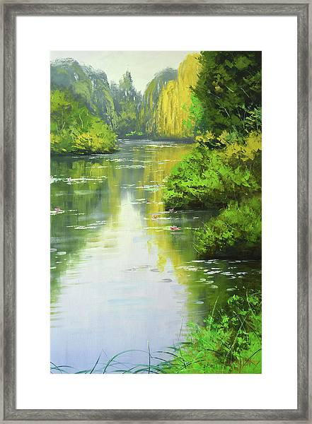 lily Pond reflections Framed Print