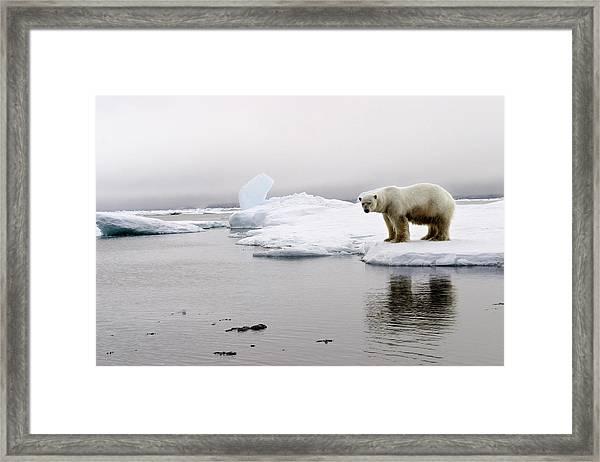 Norway, Svalbard Archipelago Framed Print