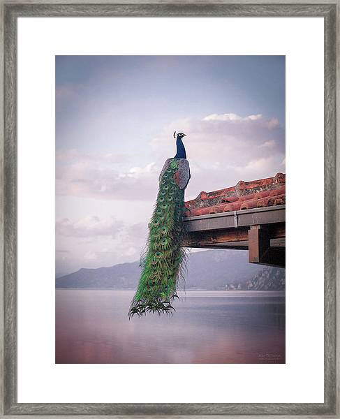 Ochrid Lake Framed Print