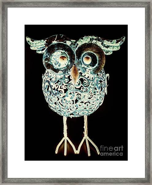 Ornamental Ornithology Framed Print
