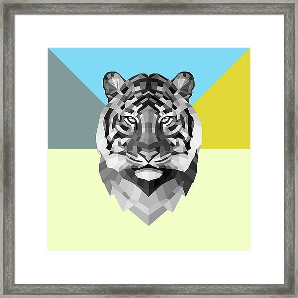 Party Tiger Framed Print