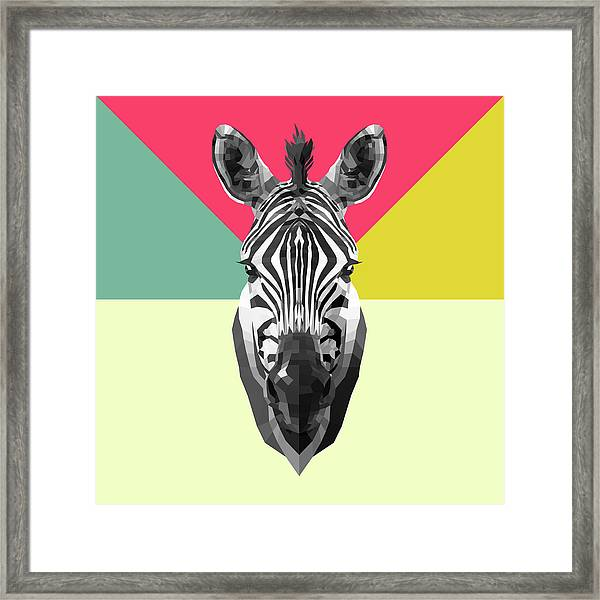 Party Zebra  Framed Print