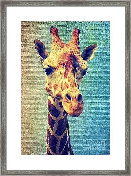 The Giraffe Framed Print