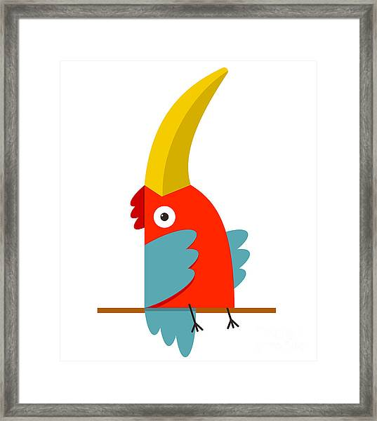 Toucan Bird With Big Beak Sitting Framed Print