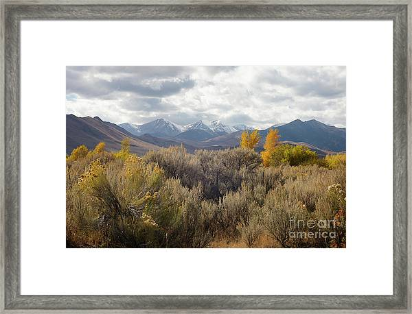 White Knob Mountains Framed Print