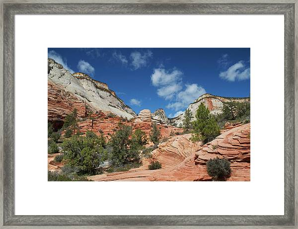 Zion Canyon Natural Beauty Framed Print by Mitch Diamond