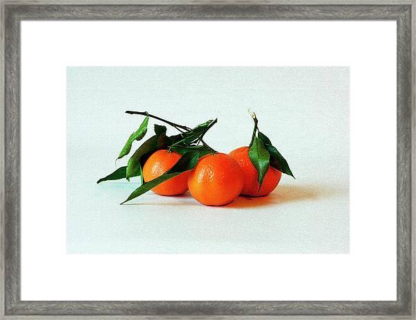 11--01-13 Studio. 3 Clementines Framed Print