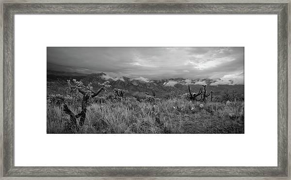 12-26-18 Snow Storm Framed Print