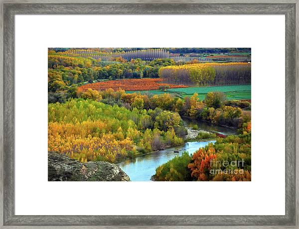 Autumn Colors On The Ebro River Framed Print