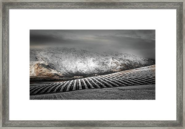 D4691 Framed Print