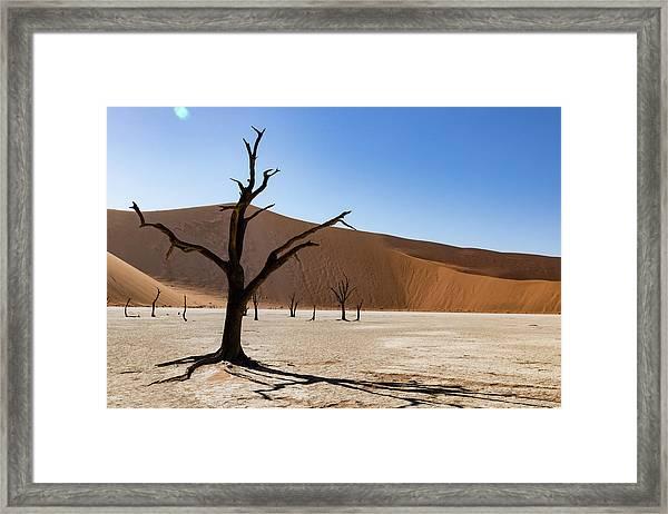 Deadvlei Framed Print