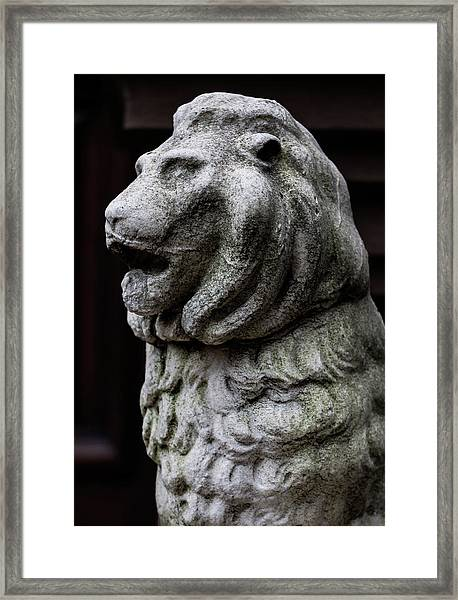 Stone Lion Framed Print by Robert Ullmann