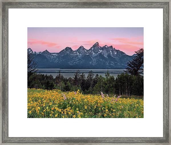 Teton Spring Framed Print