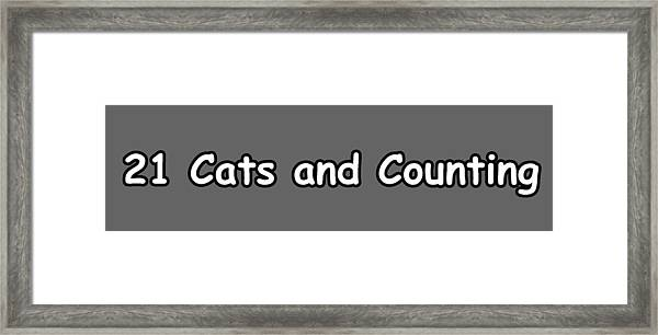 21 Cats And Counting Framed Print