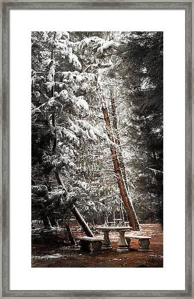 D4758 Framed Print