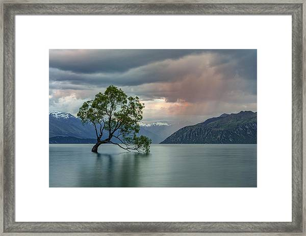 Wanaka - New Zealand Framed Print